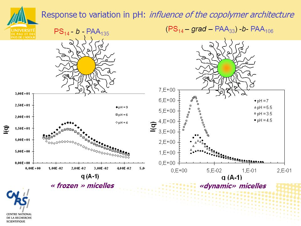 PS 14 - b - PAA 135 (PS 14 – grad – PAA 33 ) -b- PAA 106 « frozen » micelles «dynamic» micelles Response to variation in pH: influence of the copolymer architecture