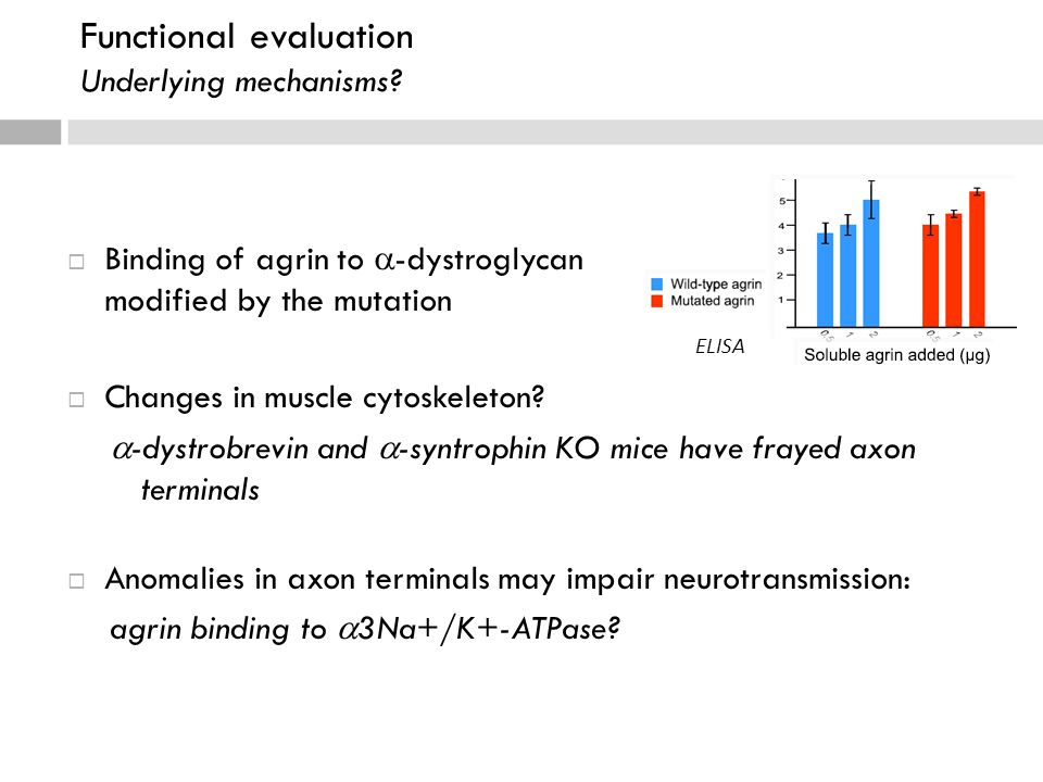 Functional evaluation Underlying mechanisms.