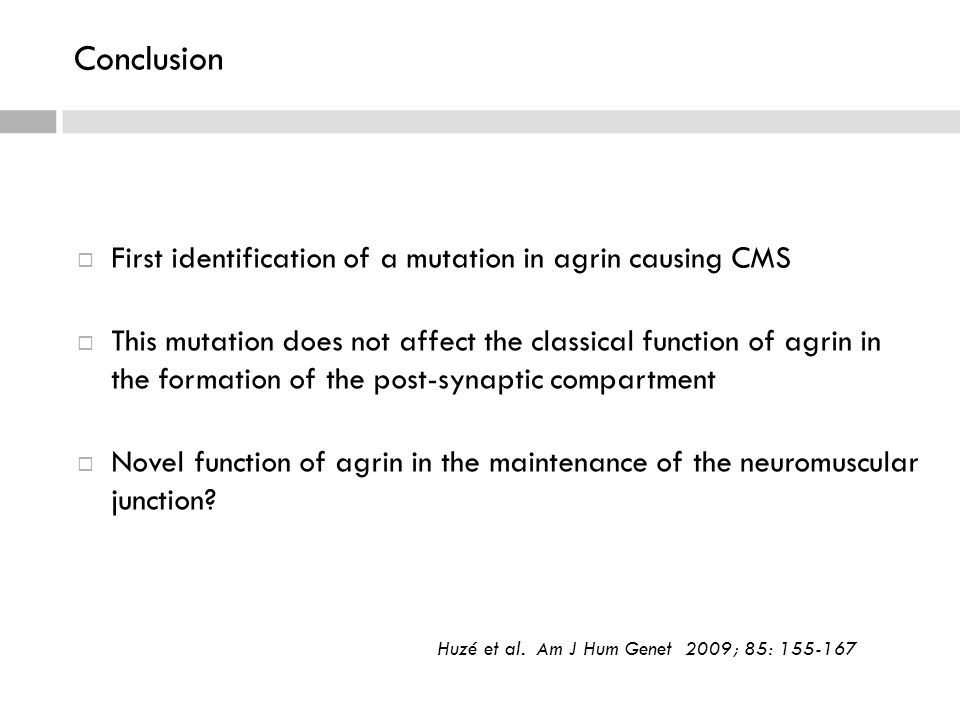  First identification of a mutation in agrin causing CMS  This mutation does not affect the classical function of agrin in the formation of the post-synaptic compartment  Novel function of agrin in the maintenance of the neuromuscular junction.