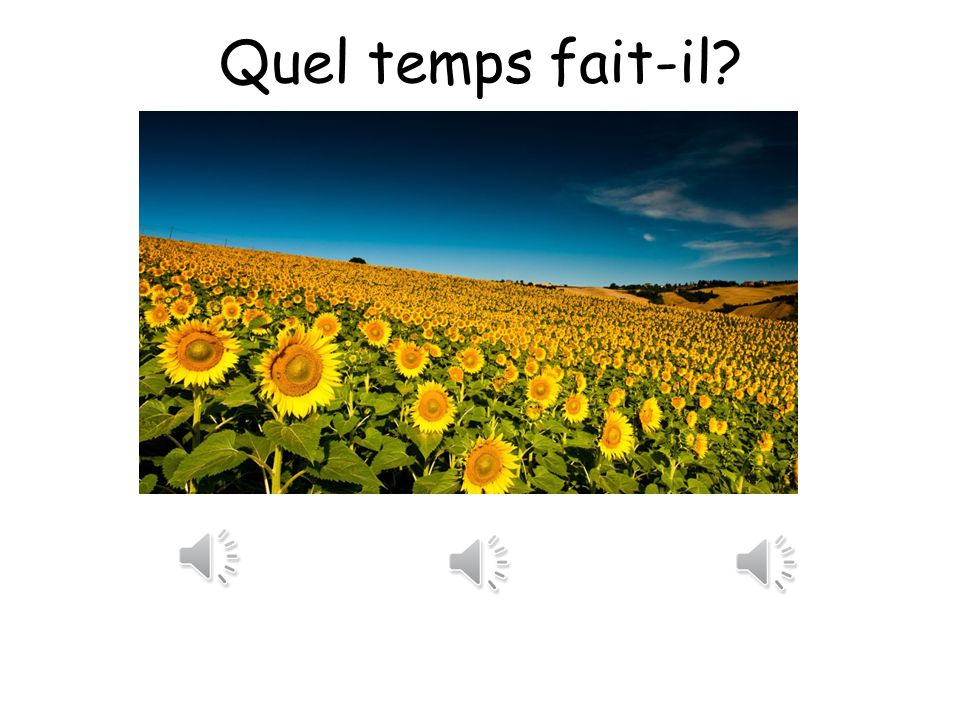 Quel temps fait-il? Look at the following weather pictures. Listen to the three different weathers in French. Can you choose which one best describes