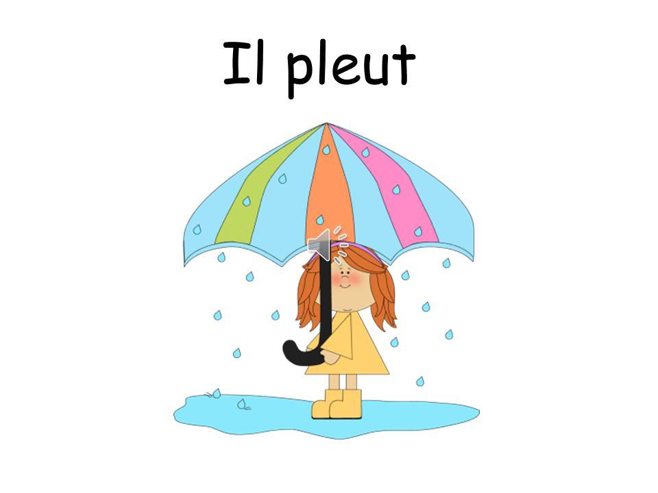 Oui! Il pleut!