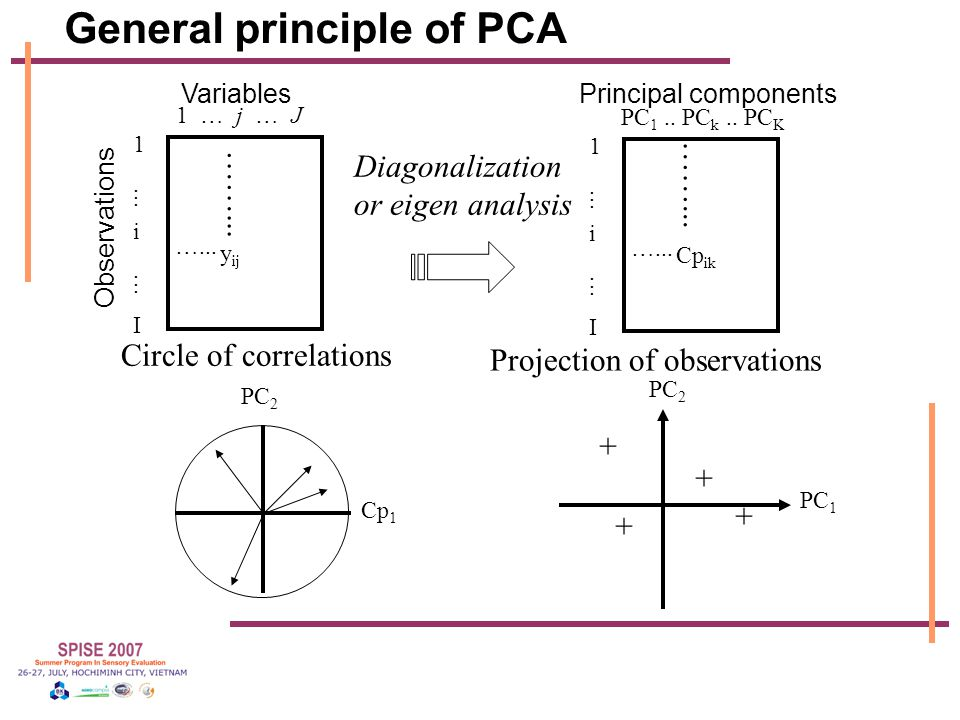 General principle of PCA 1 … j … J 1...i...I1...i...I y ij …... ……... Variables Observations PC 1.. PC k.. PC K 1...i...I1...i...I Cp ik …... ……... Pr