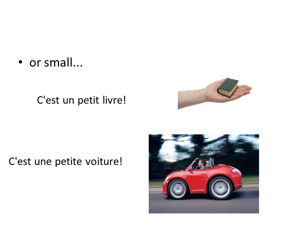 or small... C est un petit livre! C est une petite voiture!