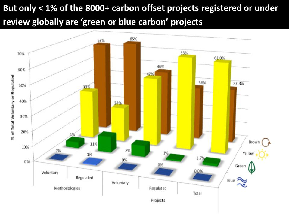 But only < 1% of the 8000+ carbon offset projects registered or under review globally are 'green or blue carbon' projects