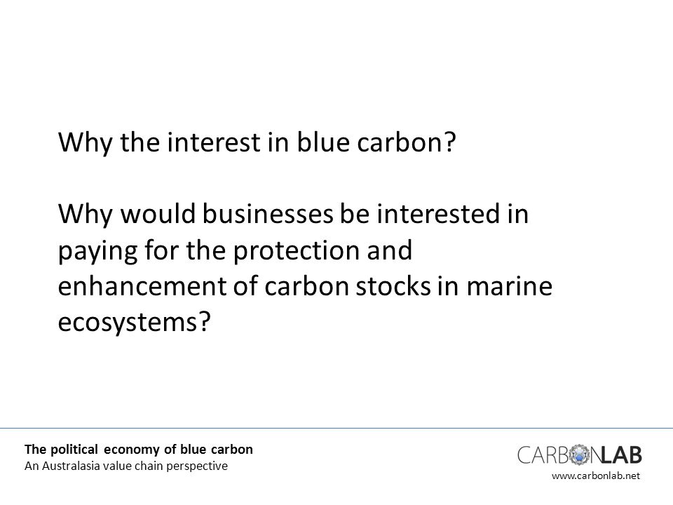 www.carbonlab.net Why the interest in blue carbon.