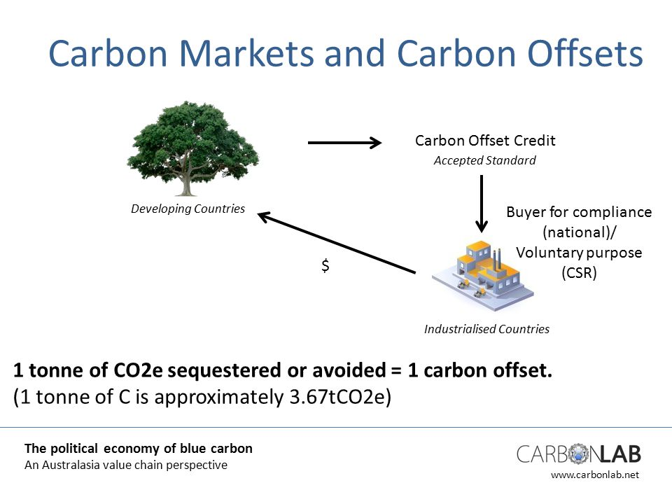 www.carbonlab.net Carbon Markets and Carbon Offsets 1 tonne of CO2e sequestered or avoided = 1 carbon offset.