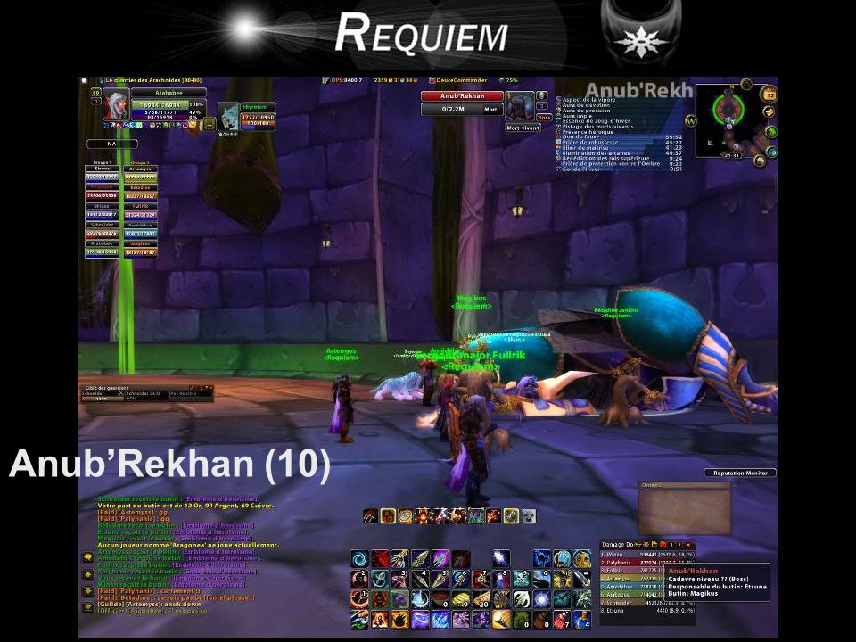 Anub'Rekhan (10)