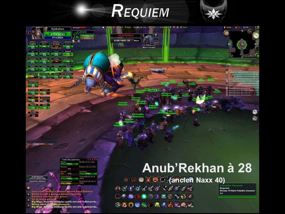 Anub'Rekhan à 28 (ancien Naxx 40)