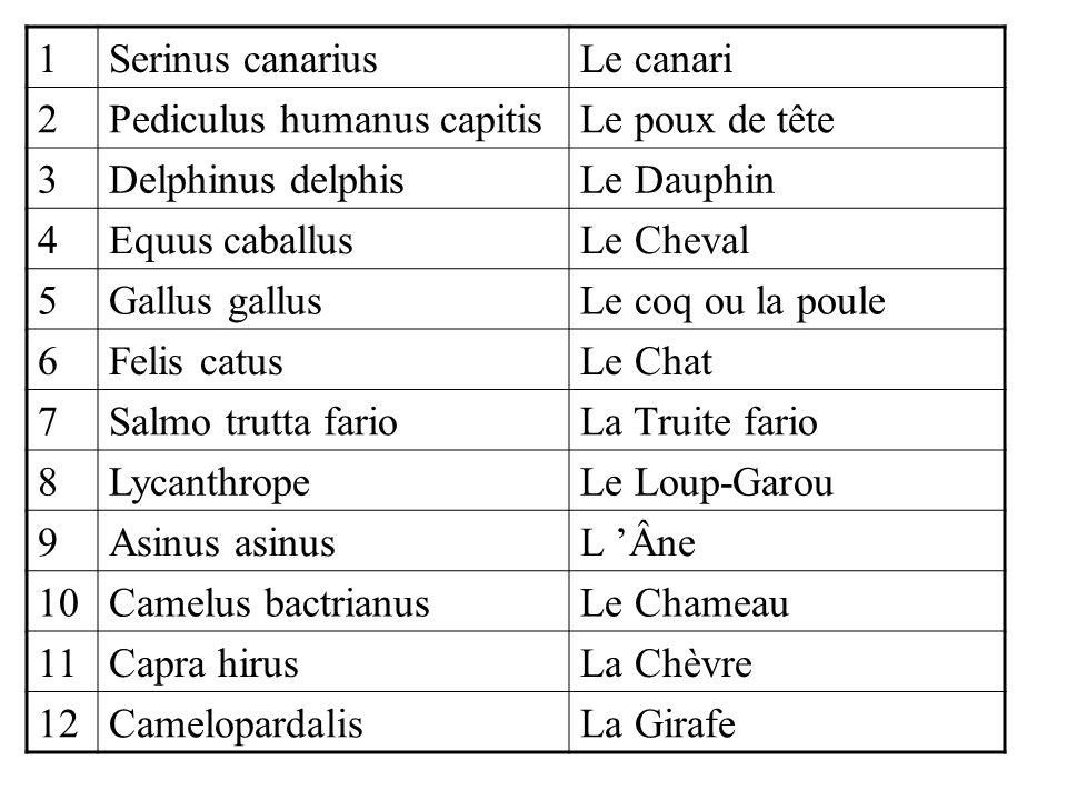 1Serinus canariusLe canari 2Pediculus humanus capitisLe poux de tête 3Delphinus delphisLe Dauphin 4Equus caballusLe Cheval 5Gallus gallusLe coq ou la poule 6Felis catusLe Chat 7Salmo trutta farioLa Truite fario 8LycanthropeLe Loup-Garou 9Asinus asinusL 'Âne 10Camelus bactrianusLe Chameau 11Capra hirusLa Chèvre 12CamelopardalisLa Girafe