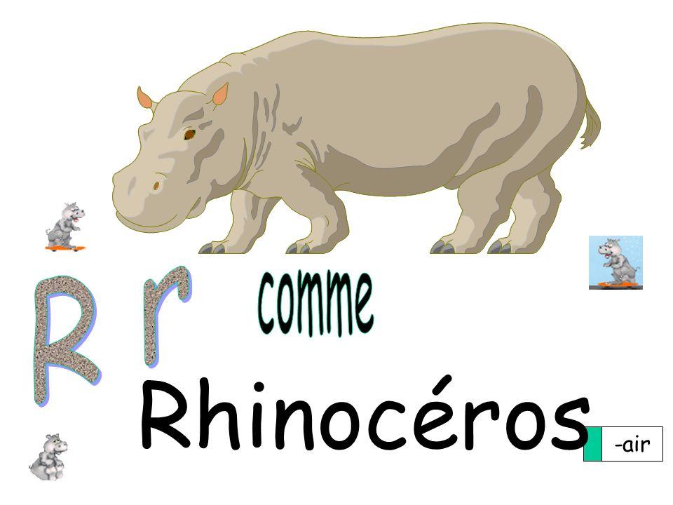 -air Rhinocéros
