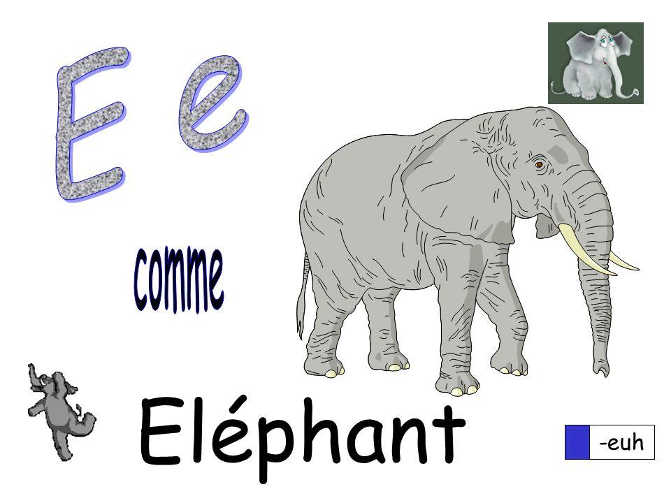 -euh Eléphant