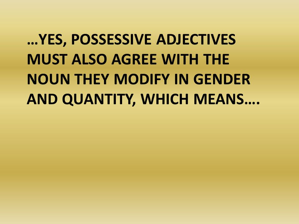 …IF MY NOUN IS MASCULINE (LE, UN), I NEED TO USE A MASCULINE POSSESSIVE ADJECTIVE.