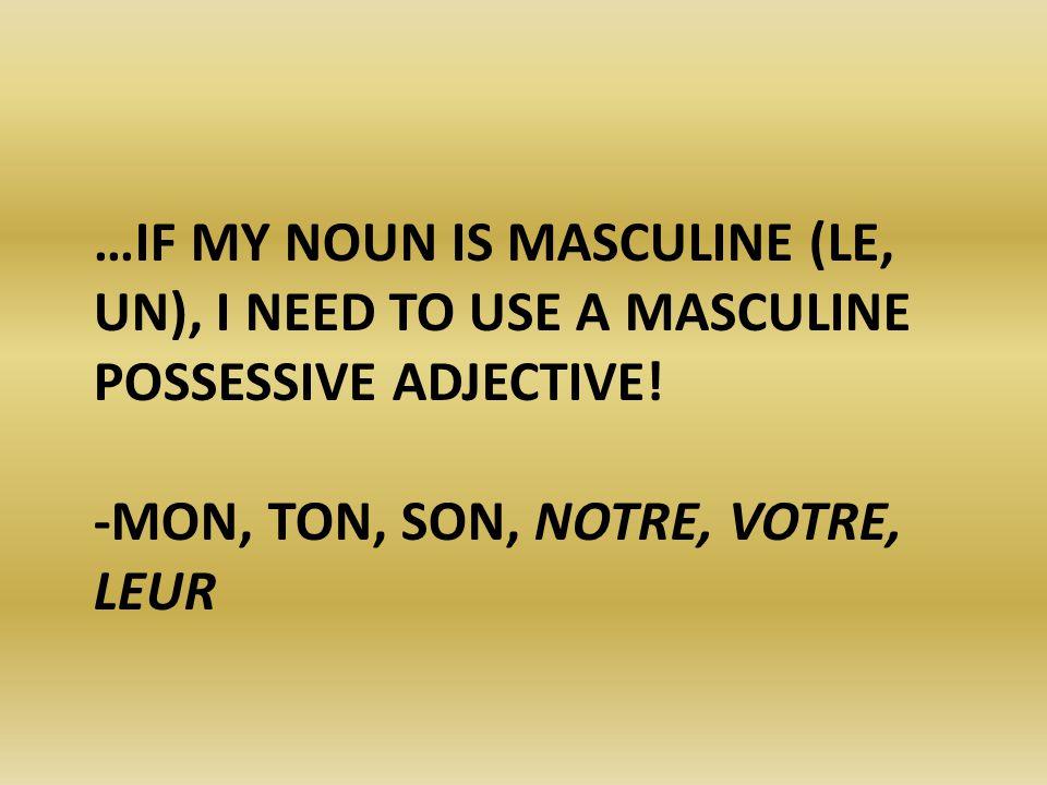 …IF MY NOUN IS MASCULINE (LE, UN), I NEED TO USE A MASCULINE POSSESSIVE ADJECTIVE! -MON, TON, SON, NOTRE, VOTRE, LEUR
