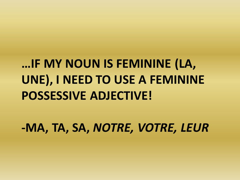 …IF MY NOUN IS PLURAL (LES, DES), I NEED TO USE A PLURAL POSSESSIVE ADJECTIVE.