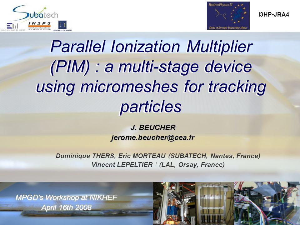 MPGD's workshop, NIKHEF, April 16 th 2008 J.