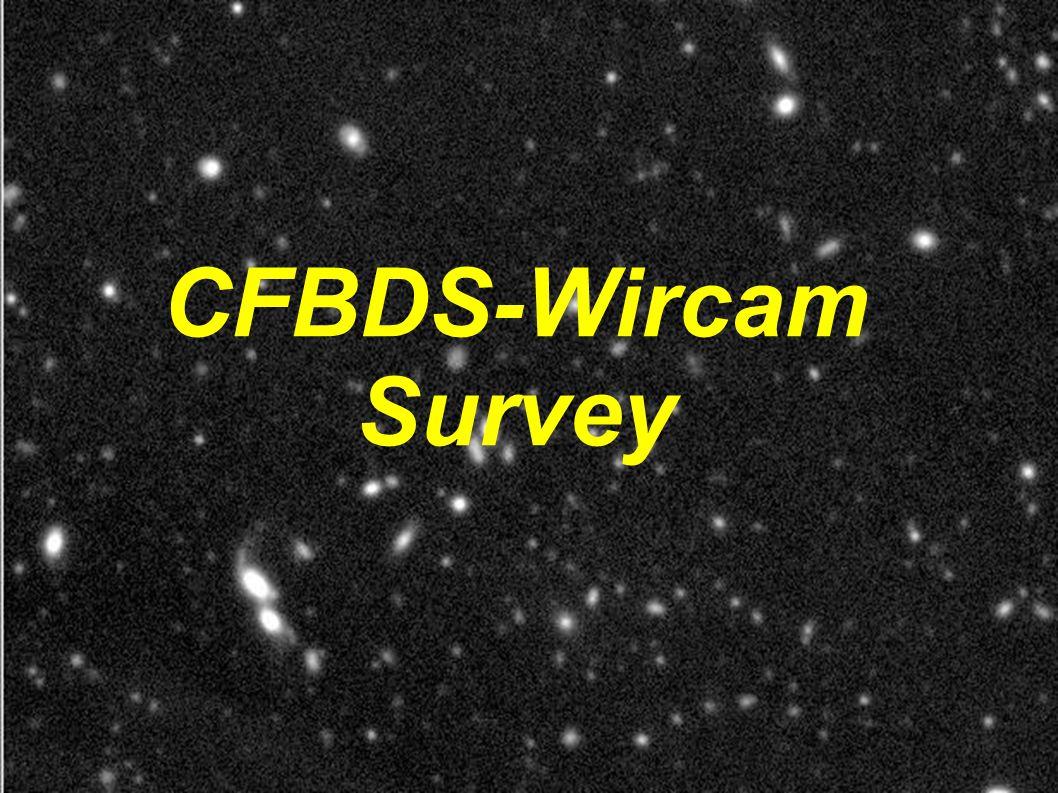 CFBDS-Wircam Survey