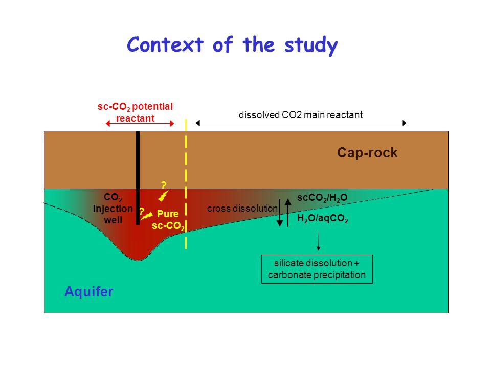 Cap-rock Aquifer silicate dissolution + carbonate precipitation dissolved CO2 main reactant sc-CO 2 potential reactant Pure sc-CO 2 cross dissolution
