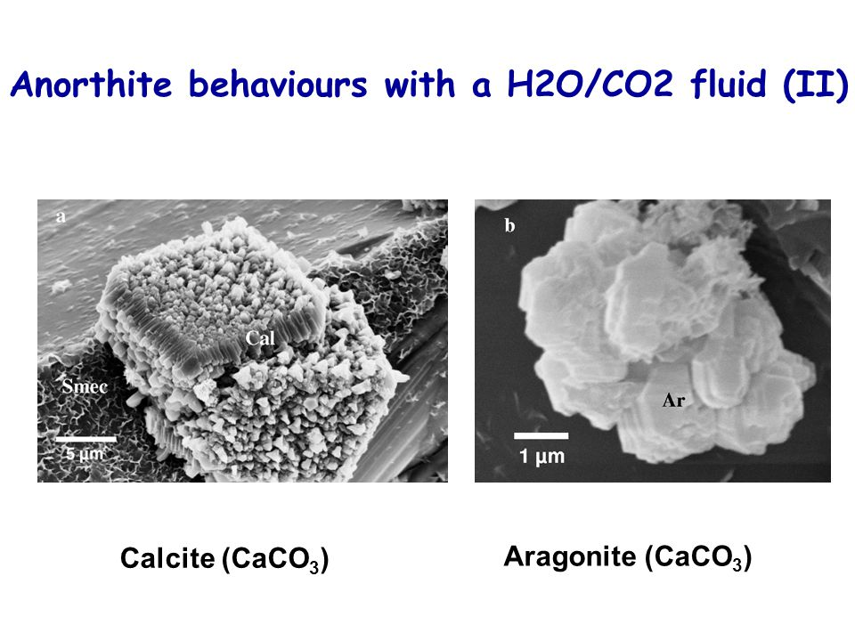 Calcite (CaCO 3 ) Aragonite (CaCO 3 ) Anorthite behaviours with a H2O/CO2 fluid (II)