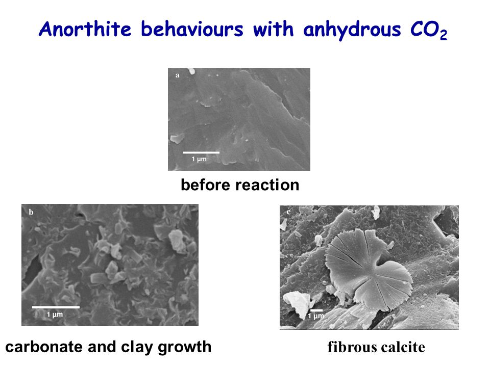 Anorthite behaviours with anhydrous CO 2 before reaction carbonate and clay growth fibrous calcite