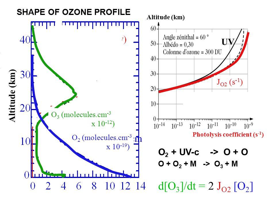 O 2 + UV-c -> O + O O + O 2 + M -> O 3 + M d[O 3 ]/dt = 2 J O2 [O 2 ] O 2 (molecules.cm -3 x 10 -19 ) Altitude (km) Photolysis coefficient (s -1 ) O 3 (molecules.cm -3 x 10 -12 ) J O2 (s -1 ) Altitude (km) SHAPE OF OZONE PROFILE UV