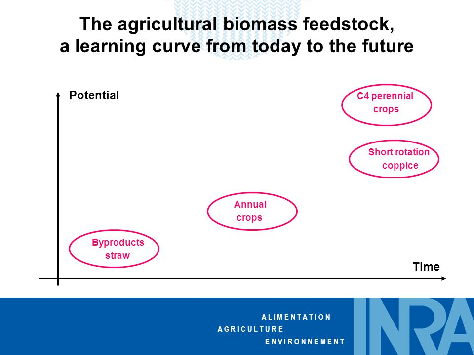 A L I M E N T A T I O N A G R I C U L T U R E E N V I R O N N E M E N T The agricultural biomass feedstock, a learning curve from today to the future Byproducts straw Annual crops C4 perennial crops Short rotation coppice Time Potential
