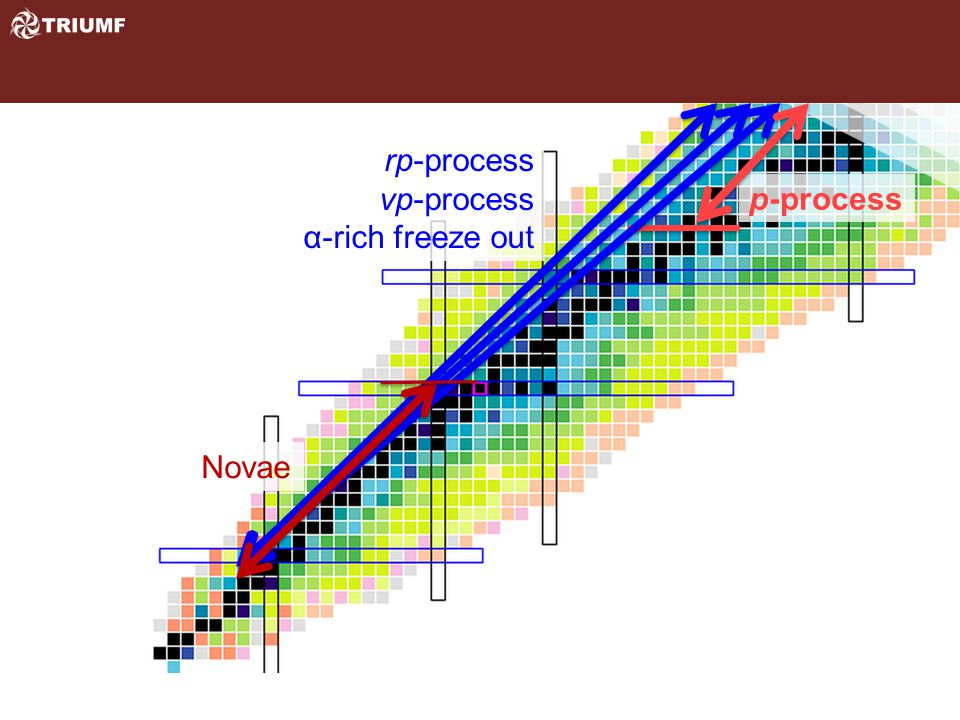 Novae rp-process νp-process α-rich freeze out p-process