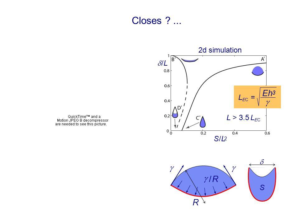 Closes ?... S /LS /L 2  /L /L    / R/ R R L EC =  Eh 3 L > 3.5 L EC  S 2d simulation