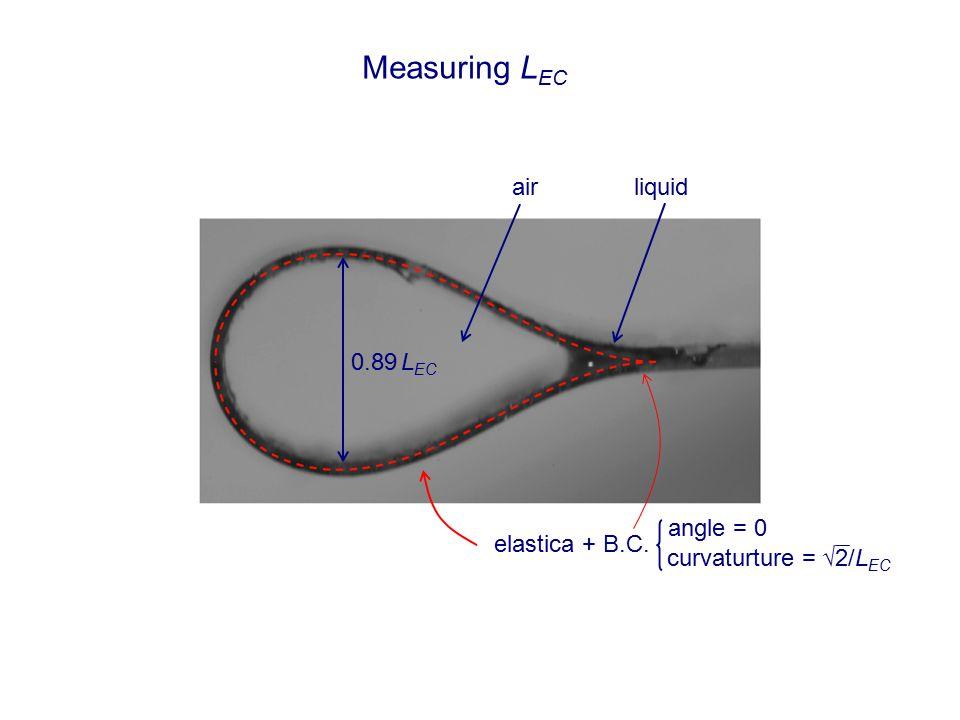 Measuring L EC liquidair 0.89 L EC elastica + B.C. angle = 0 curvaturture = √2/L EC