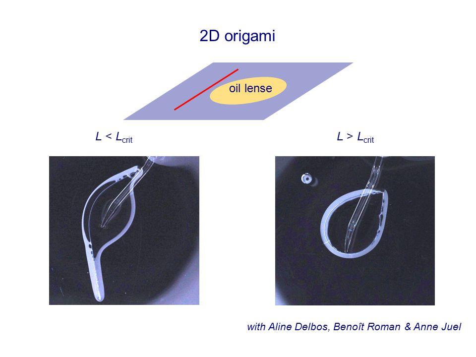 2D origami with Aline Delbos, Benoît Roman & Anne Juel oil lense L < L crit L > L crit