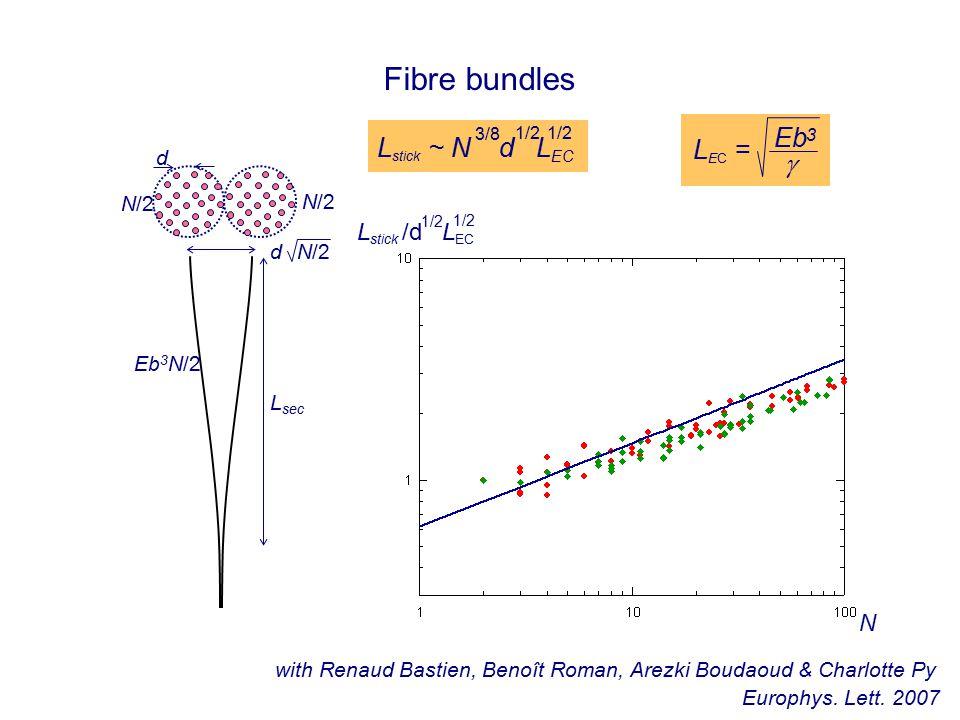 Fibre bundles Eb 3 N/2 L sec N/2 d N/2 d N L stick ~ N d L EC 3/8 1/2 L stick /d L EC 1/2 L EC =  with Renaud Bastien, Benoît Roman, Arezki Boudaoud & Charlotte Py Europhys.