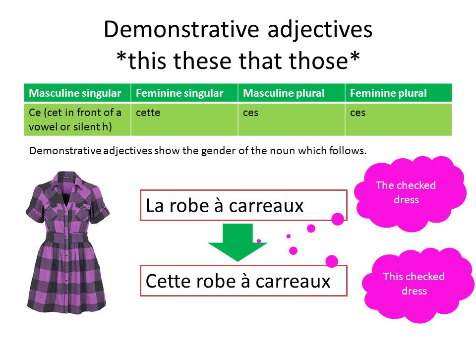 Demonstrative adjectives *this these that those* Masculine singularFeminine singularMasculine pluralFeminine plural Ce (cet in front of a vowel or silent h) cetteces Demonstrative adjectives show the gender of the noun which follows.