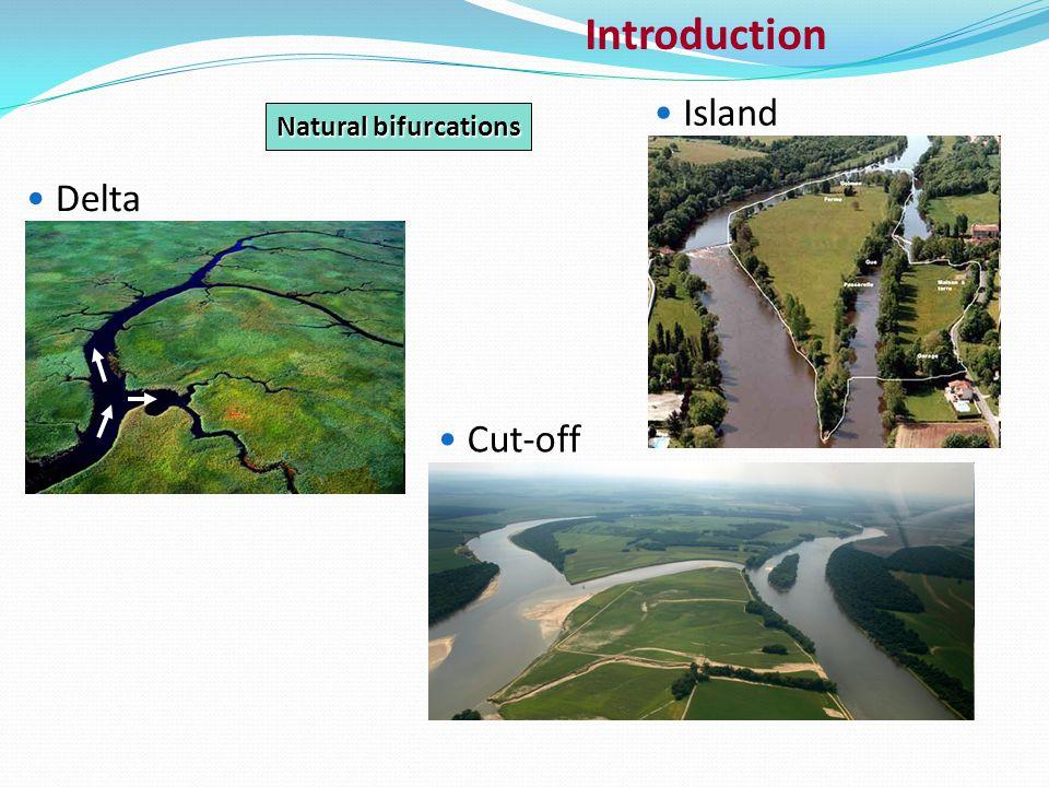 Introduction Delta Cut-off Island Natural bifurcations
