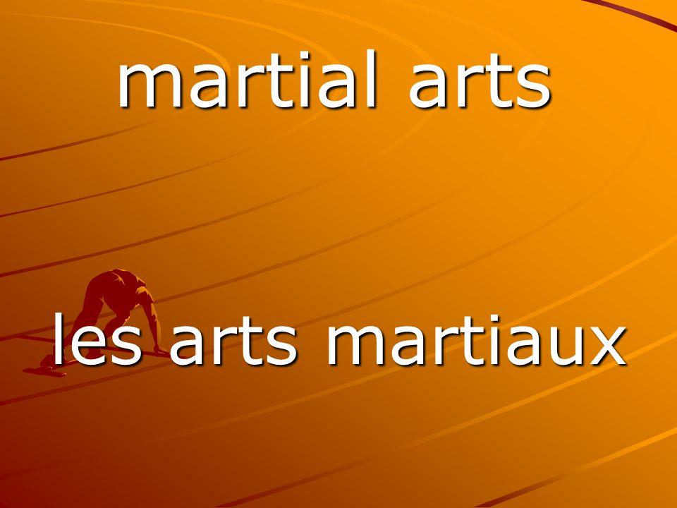 les arts martiaux martial arts