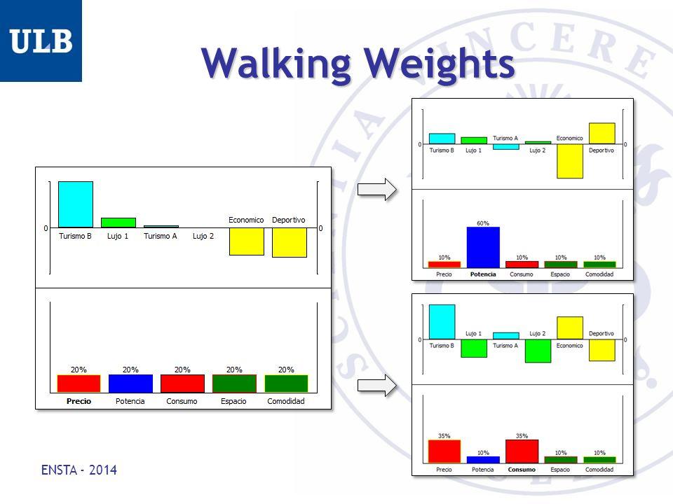 Walking Weights ENSTA - 2014 12