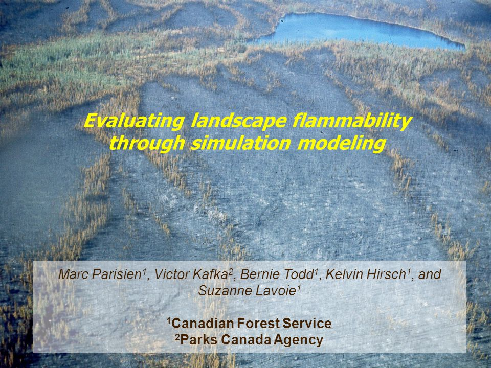 Presentation to the NCE Meeting in Toronto, Feb 11/12, 2003 Natural Resources Canada Ressources naturelles Canada Canadian Forest Service Service canadien des forets