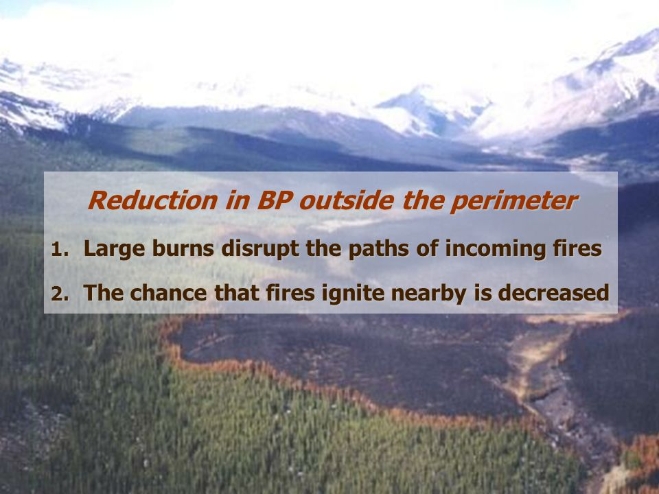 Reduction in BP outside the perimeter 1. Large burns disrupt the paths of incoming fires 2.