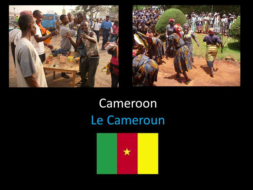 Cameroon Le Cameroun