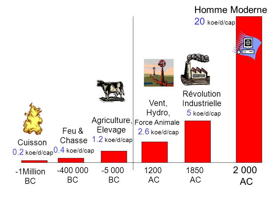 -1Million BC Cuisson 0.2 koe/d/cap -400 000 BC Feu & Chasse 0.4 koe/d/cap -5 000 BC Agriculture, Elevage 1.2 koe/d/cap 1200 AC Vent, Hydro, Force Animale 2.6 koe/d/cap 1850 AC Révolution Industrielle 5 koe/d/cap 2 000 AC Homme Moderne 20 koe/d/cap