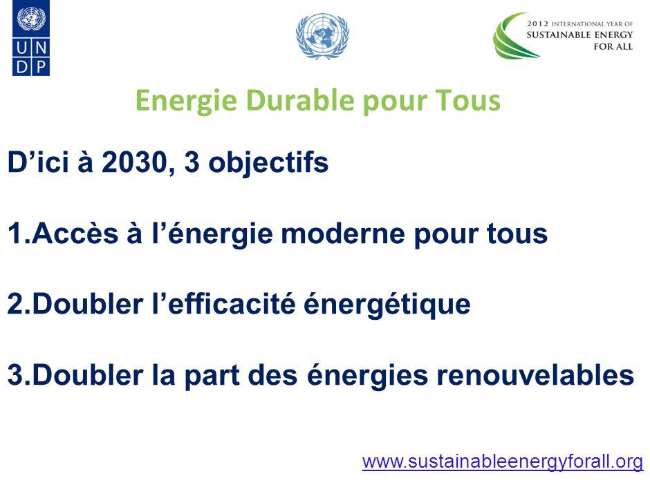 © The Energy Resource Institute Sustainable Energy for All Energie Durable pour Tous L'énergie transforme nos vies, nos économies & notre planète.