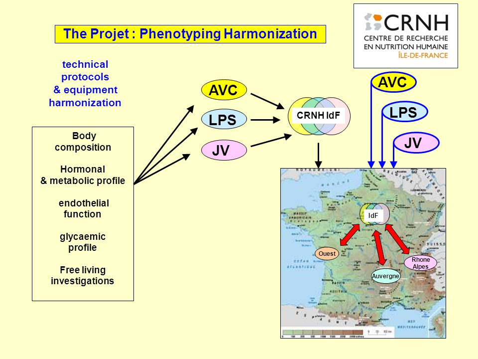 The Projet : Phenotyping Harmonization Body composition Hormonal & metabolic profile endothelial function glycaemic profile Free living investigations technical protocols & equipment harmonization CRNH IdF AVC LPS JV AVC LPS JV IdF Auvergne Ouest Rhone Alpes
