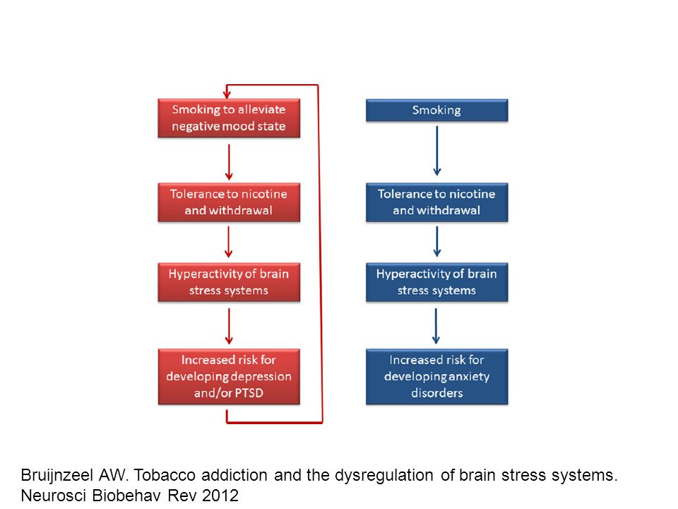 Bruijnzeel AW. Tobacco addiction and the dysregulation of brain stress systems.