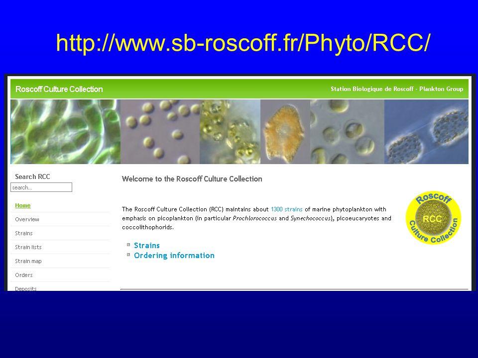 http://www.sb-roscoff.fr/Phyto/RCC/
