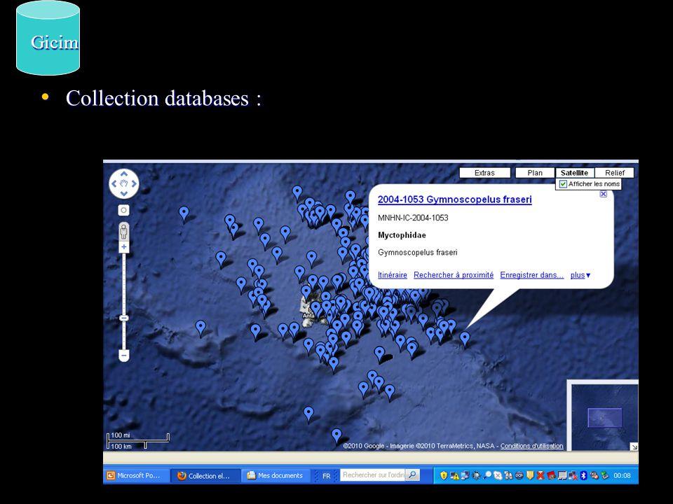 Delepine, Reneau, Hureau MD03, 1974 MD04, 1975 Duhamel & Observers SKIF, 1987, 1988 Ipeker, Ichtyoker Gicim Observers Species entry