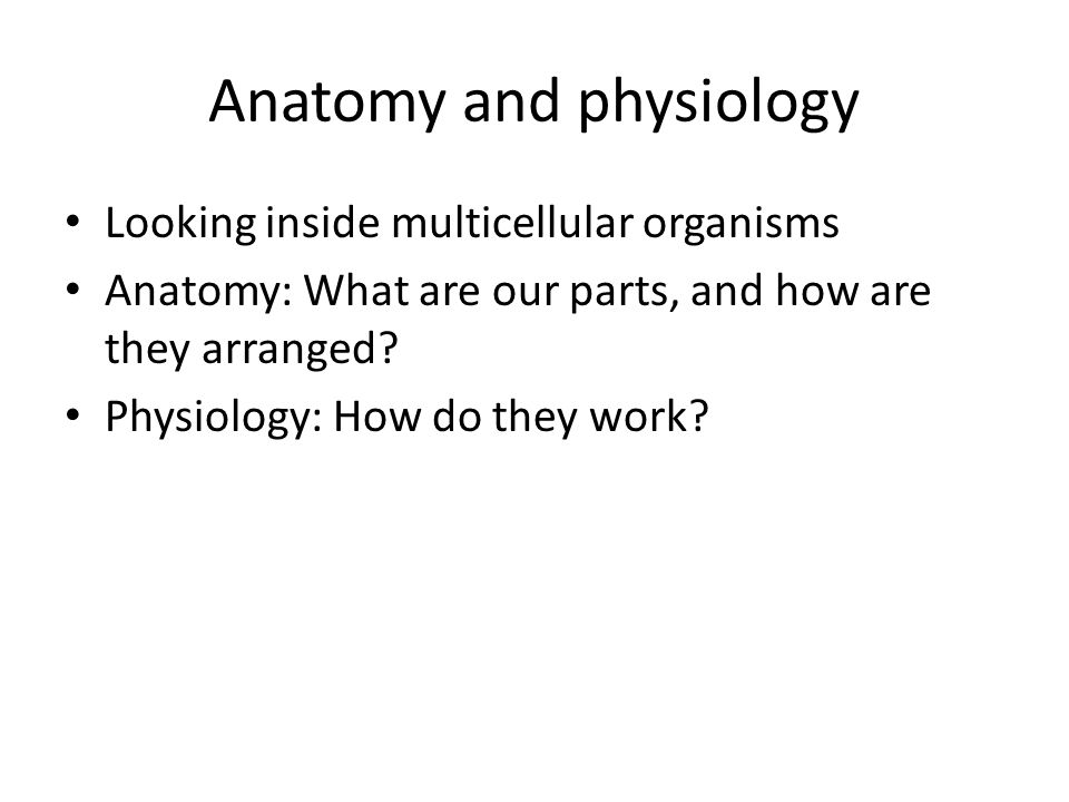 Frogs, Horses, People Similarities and differences The comparative method in biology Organ systems, organs, tissues