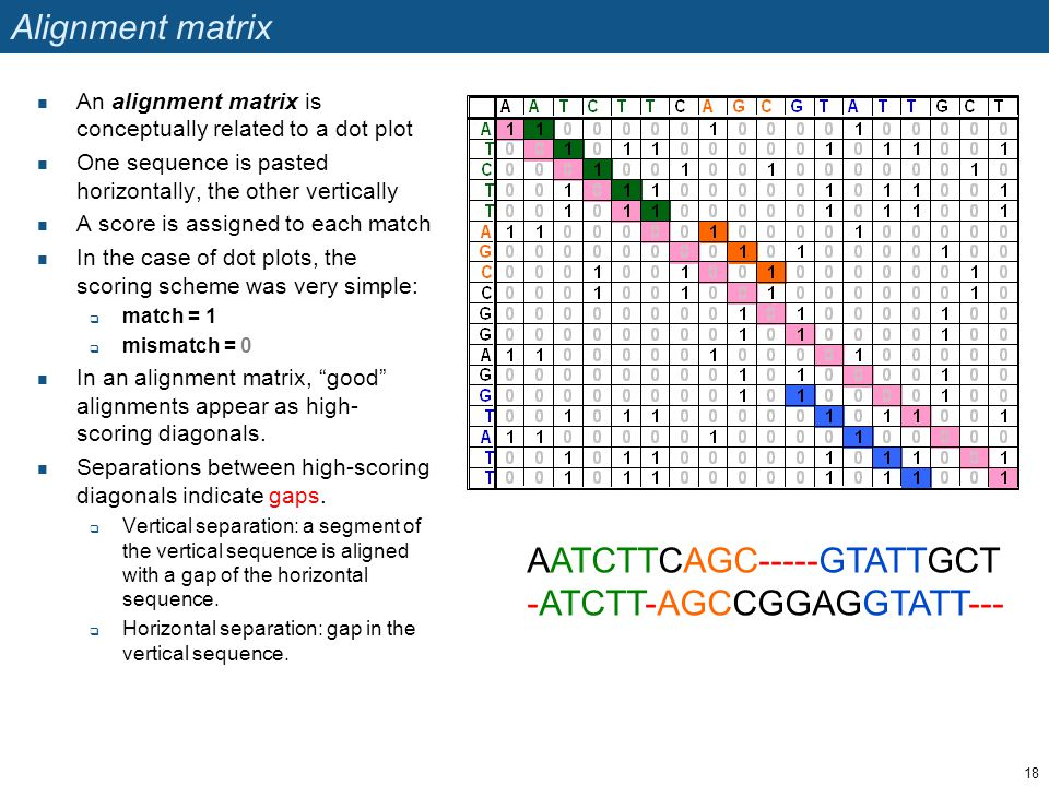 Alignment matrix An alignment matrix is conceptually related to a dot plot One sequence is pasted horizontally, the other vertically A score is assigned to each match In the case of dot plots, the scoring scheme was very simple:  match = 1  mismatch = 0 In an alignment matrix, good alignments appear as high- scoring diagonals.