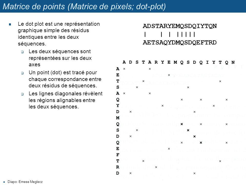 Matrice de points (Matrice de pixels; dot-plot) Le dot plot est une représentation graphique simple des résidus identiques entre les deux séquences.