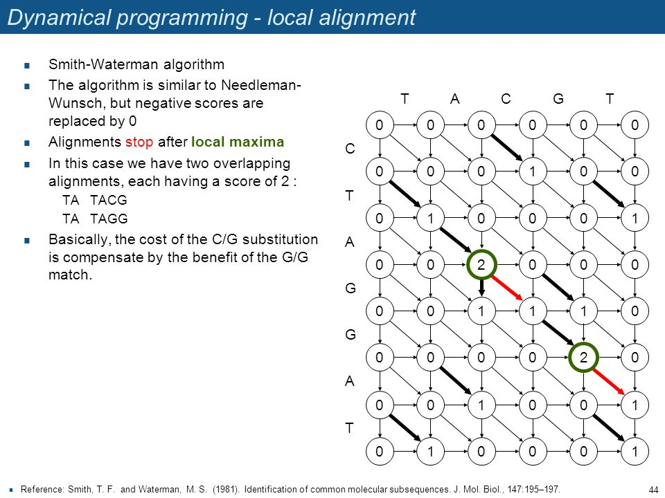 Dynamical programming - local alignment Smith-Waterman algorithm The algorithm is similar to Needleman- Wunsch, but negative scores are replaced by 0 Alignments stop after local maxima In this case we have two overlapping alignments, each having a score of 2 : TATACG TATAGG Basically, the cost of the C/G substitution is compensate by the benefit of the G/G match.