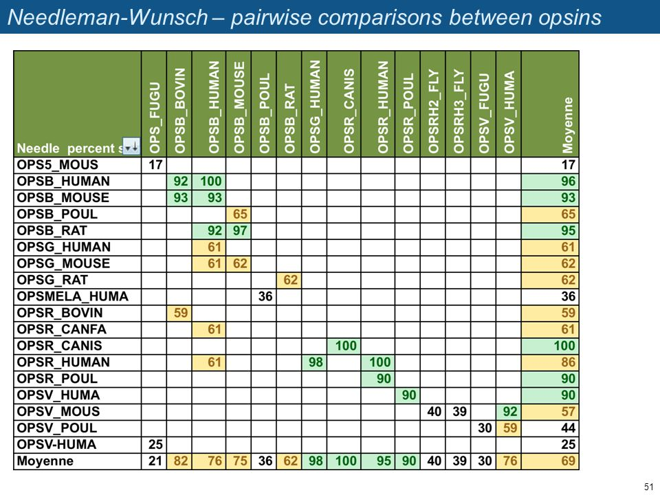 Needleman-Wunsch – pairwise comparisons between opsins 51