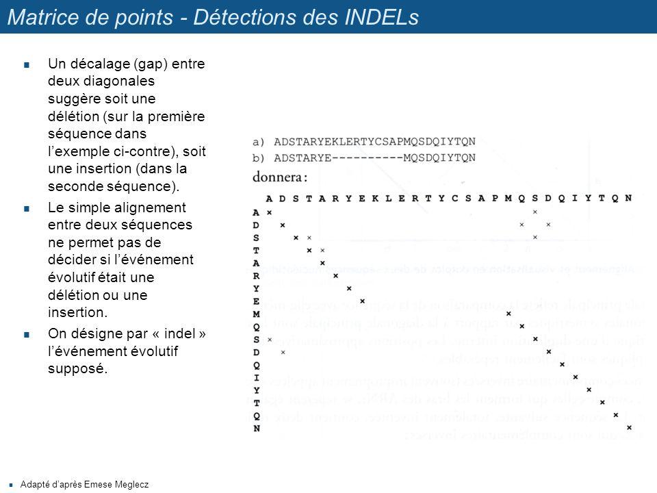 Matrice de points - Détections des INDELs Un décalage (gap) entre deux diagonales suggère soit une délétion (sur la première séquence dans l'exemple c