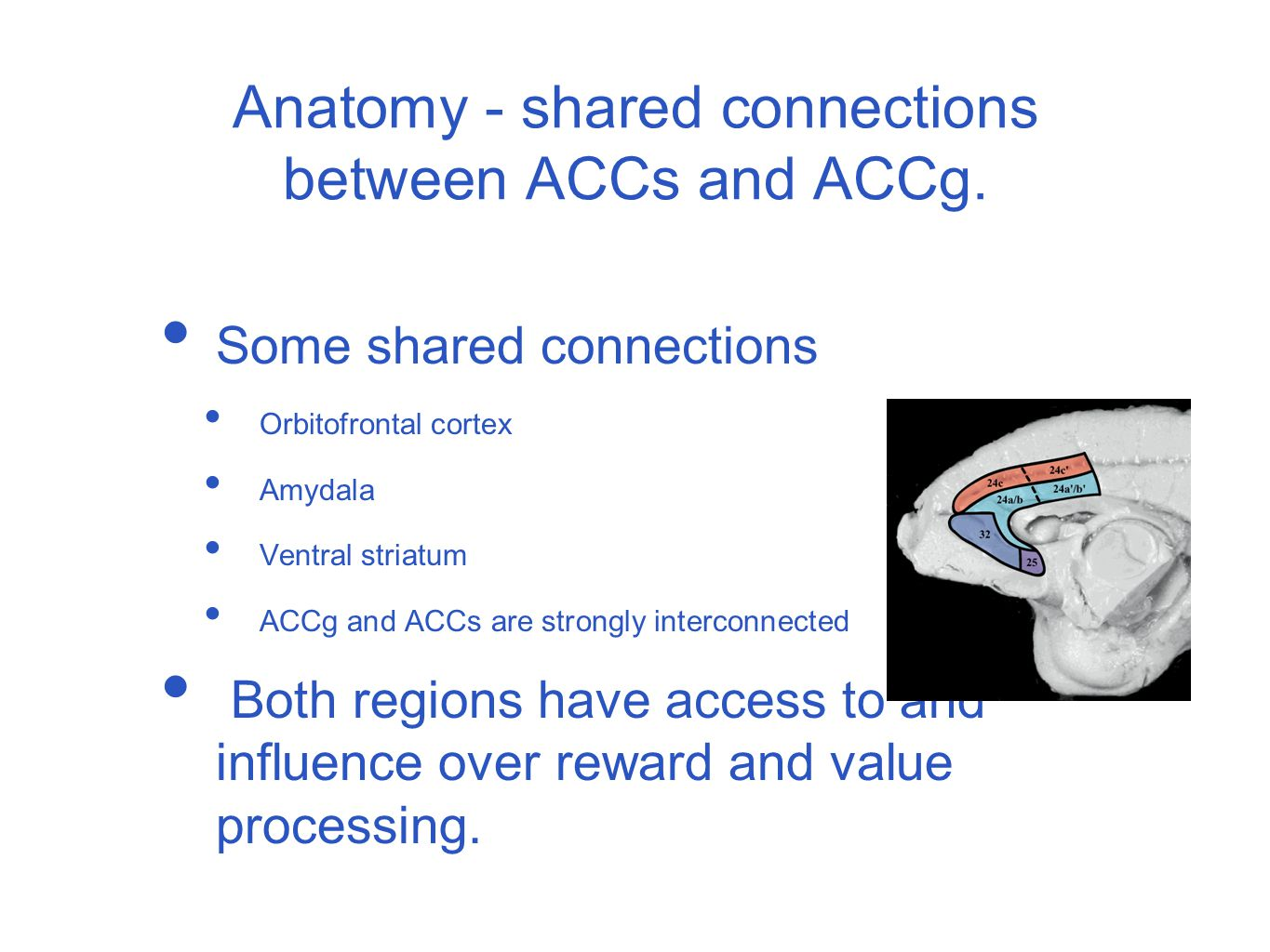 ACC Sulcus and learning about your actions.